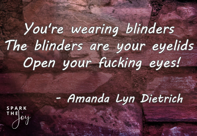 You're wearing blinders quote