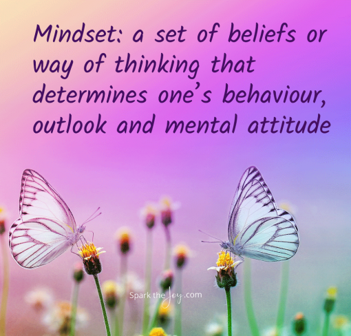 Mindset: a set of beliefs or way of thinking that determines one's behaviour, outlook and mental attitude